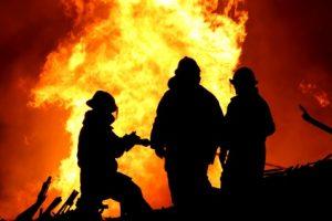 Sägewerke brennen